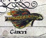 Fish - The New World