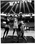 Lady Hilltoppers by WKU Archives